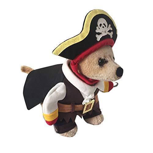 KSITH Haustierkleidung Lustiges Halloween-Katzen-Hundekostüm-Herbst-und Winter-Piraten-Kleid (Am Besten Gekleidet Kostüm)