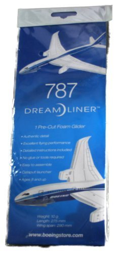 787-dreamliner-glider-by-boeing
