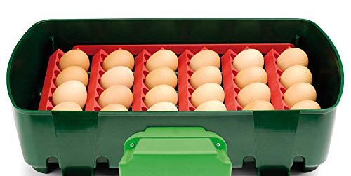 Incubatrice per uova automatica digitale con girauova, capacità 24 uova di gallina, anatra, oca, 96 uova di quaglia,rettili,tartaruga, basso consumo 1,3kw/giorno, made in italy