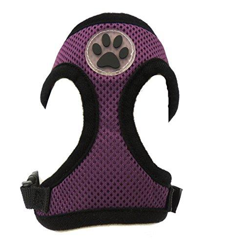 Adorabile Tea Cup//peluche piccolo cane razze imbracatura imbottita colorata in nylon regolabile con decoro nero Paw Print-disponibile in 6colori e 5misure