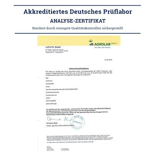 MSM Kapseln Vergleichssieger 2019* – 365 vegane Kapseln (6 Monate) – 1600mg MSM (Methylsulfonylmethan) Pulver je Tagesdosis – Laborgeprüft Ohne Zusätze hergestellt in Deutschland
