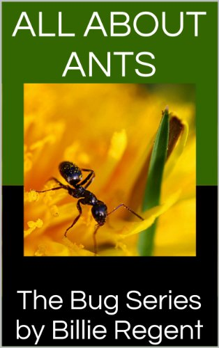 All About Ants: Ant Book For Kids With Information About Ant Colonies, Carpenter Ants, Ant Types, Ant Hill, and Black Ants (Bug Series 1) (English - Ant Wissenschaft Farm
