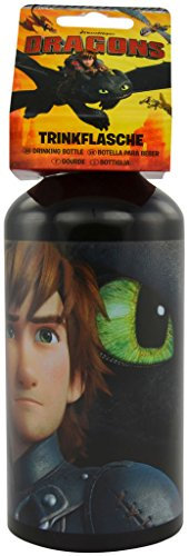 Dragons Borracce Sdentato / Hiccup (Bottle Toothless and Hiccup)