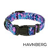 HAVNBERG Hundehalsband Gr. S Halsumfang 29cm - 39cm, Halsband für Kleine Hunde oder Welpen, Breite 1,5cm, Welpenhalsband, lila Geometrisches Dreieck Design