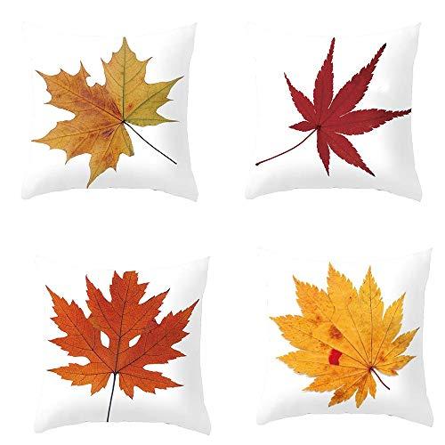 TAOtTAO - Funda de cojín Decorativa para sofá o Cama de Halloween...