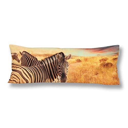 CiCiDi Seitenschläferkissen 5ft (140 x 40 cm) Zebras Weadow Sunset Wildlife Baumwolle Maschinenwäsche mit Reißverschlüssen Mutterschafts- / Lange Kissenbezug -