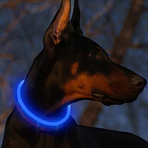 Fttouuy LED Leuchthalsband Hunde Halsband USB wiederaufladbar - Längenverstellbarer Haustier Sicherheit Kragen für Hunde und Katzen - 3 Modus (Blau) -