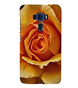 ifasho Designer Back Case Cover for Asus Zenfone 3 ZE520KL (5.2 Inches) (Saraca Asoca Rose Cookies Mould Rose Toner FinestAdj.BestEliteCream)