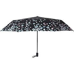 Paraguas Fractal