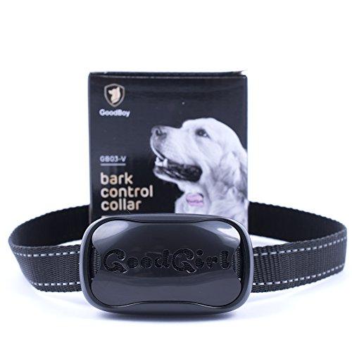 Hunde trainingshalsband für kleine und mittelgroße Hunde mit Vibration. Kontrolle von übermäßigem Bellen mit diesem einfachen Antibell Halsband. Sicher und human ohne Schock (GoodBoy, Schwarz) Test