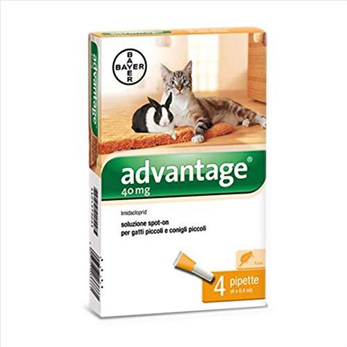 Bayer 84329097 Advantage Spot On Gatto, 40 mg
