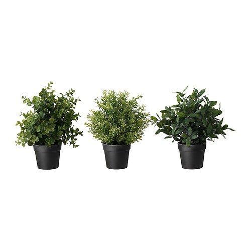 ikea-fejka-kunstliche-topfpflanze-krauter-sortiert-10-cm