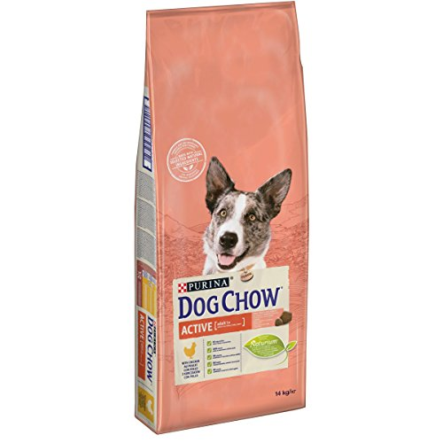 Purina Dog Chow Active pienso Perro Adulto Pollo 14