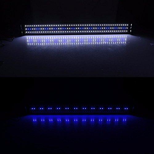 Lampada-da-serbatoio-per-pesci-acquari-con-luce-bianca-e-24-LED-blu-con-supporto-estensibile-colore-120-bianco-e-24-blu