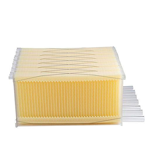 Imkerei-Beehive-Tools für Imker Beehive Frames Flow Honey Wooden Beehive House Bulk Automatic Honey Beehive Box Kit mit 7 Standard Frames