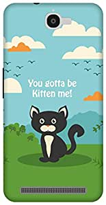 The Racoon Lean Kitten Me hard plastic printed back case/cover for Alcatel Onetouch Flash 6042D