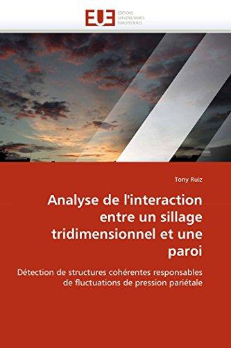 Analyse de l''interaction entre un sillage tridimensionnel et une paroi par Tony Ruiz
