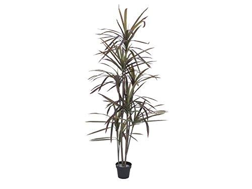 artplants Künstliche Dracaena Marginata RADO, grün-rot, 180 cm – Kunstpflanze