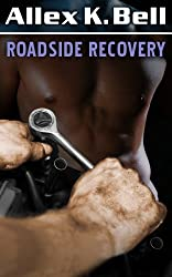 Roadside Recovery (a Gay Sex Story)