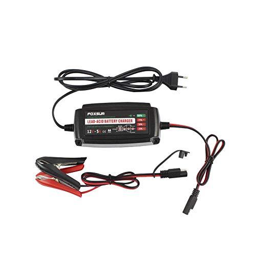 Househome 12V 5A Smart Battery Charger, Tragbarer Akkuhalter Mit Abnehmbarem Alligator/Ringe / Clips Schnellaufladendes Wasserdichtes Riesel-Ladegerät Für Auto-Bleiakkus