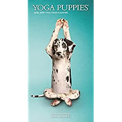 2018 Yoga Puppies Two Year Pock Planner