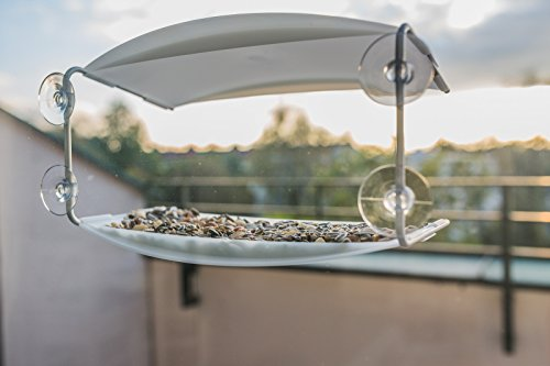 Radius 395 C Vogelhaus Piep Show Transparent - 10