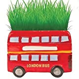 Cheatwell Games 80031 London Bus Grow Your Own Craft Kit