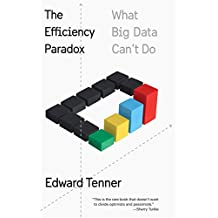 The Efficiency Paradox: What Big Data Can't Do (English Edition)