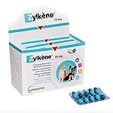 ZYLKÈNE VÉTOQUINOL LABORATORY ZYLKENE 75MG 10 Anti-Stress Capsules for Small Dog and Cat Maxi 10KG