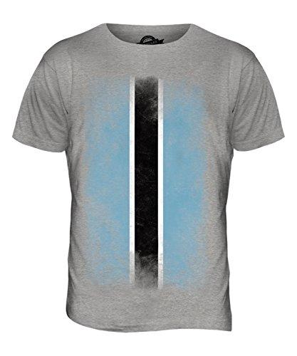 CandyMix Botswana Verblichen Flagge Herren T Shirt Grau Meliert