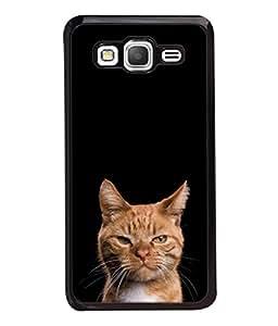 PrintVisa Designer Back Case Cover for Samsung Galaxy Grand Prime :: Samsung Galaxy Grand Prime Duos :: Samsung Galaxy Grand Prime G530F G530Fz G530Y G530H G530Fz/Ds (Beautiful Aggressive Cat Wild Animal Pets)