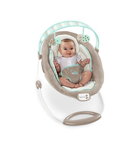 Ingenuity 10269 Bouncer Sampson Babywippe - 6