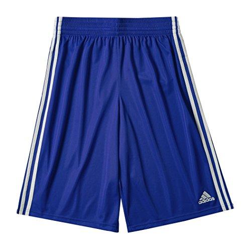adidas, Pantaloni corti Uomo Commander, Blu (Collegiate Royal/White), L
