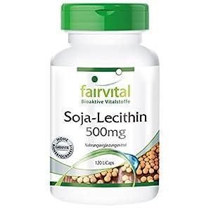 Soja-Lecithin 500mg – für 40 Tage – VEGAN – HOCHDOSIERT – 120 LiCaps
