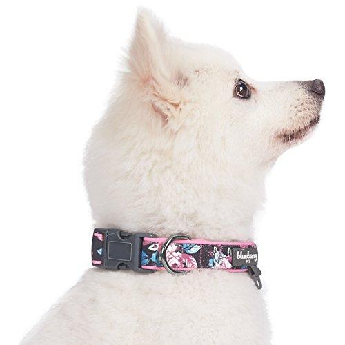 Blueberry Pet 1,5cm S Klein Frühlingsgru? Rosig Bedruckt Niedliches Neopren-Gepolstertes Hundehalsband - 4