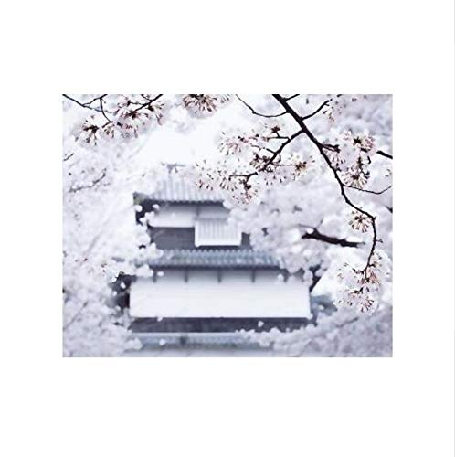 SWBGZD malen nach Zahlen Japanische malerei architektonische kirschblüte Landschaft DIY malerei by Zahlen Digitale Japan wandkunst Bild für wohnkultur 40X50cm (Der Japanische Spielzeug-küche)