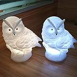 Catkoo Creativo Morbido Gufo Animale USB LED Luce Notturna Giocattolo Lampada da Tavolo Casa Arredamento Camera da Letto, Perfetta Formazione Regali di Intelligenza per Bambini Bianca