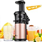 Best Masticating Juicers - Amzdeal Slow Juicer Masticating Juicer Machine 200W, Review