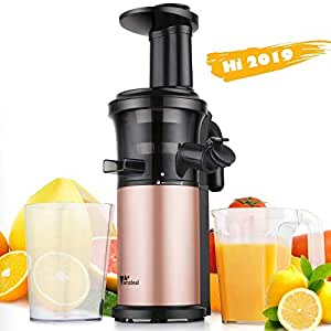 Amzdeal Slow Juicer Masticating Juicer Machine 200W, with Reverse Function and Quiet Motor, Cold Press Juicer Creates Fresh and Nutrient Fruit and Veg Juice, BPA Free