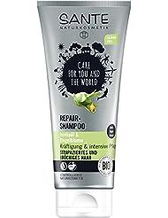 Sante Naturkosmetik Shampoo Jojoba Care 200ml, 1er Pack (1 x 200 ml)