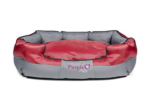 Purple-Pets Cuccia...