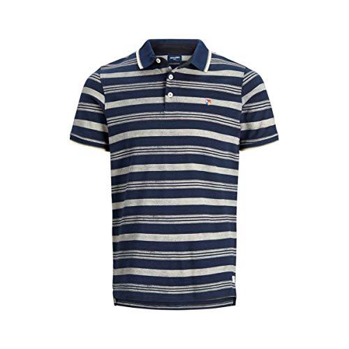 JACK & JONES PREMIUM Herren JPRPAULOS Play Stripe BLU. SS Polo Poloshirt, Mehrfarbig (Mood Indigo Slim Fit), Large (Herstellergröße: L) -