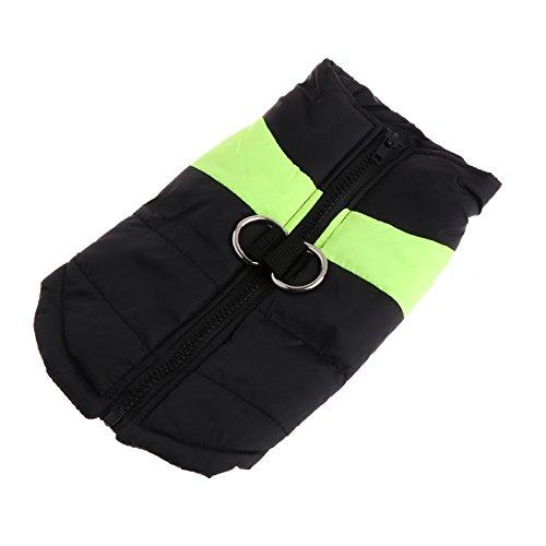 LANDUM Kleidung für Kleine Hunde Winter Hunde/Welpen Chihuahua Pet Wasserdichter Hundemantel Jacke, Polyester, Leuchtend grün, S