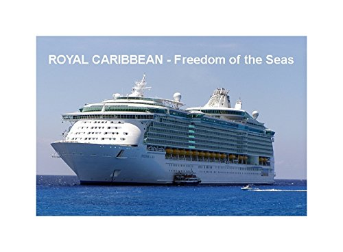 imn-para-nevera-buque-de-crucero-freedom-of-the-seas-royal-caribbean-9cm-x-6cm-jumbo