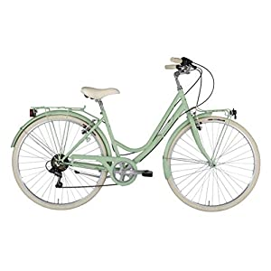 41uAw62yzOL. SS300 Alpina Bike Sharin