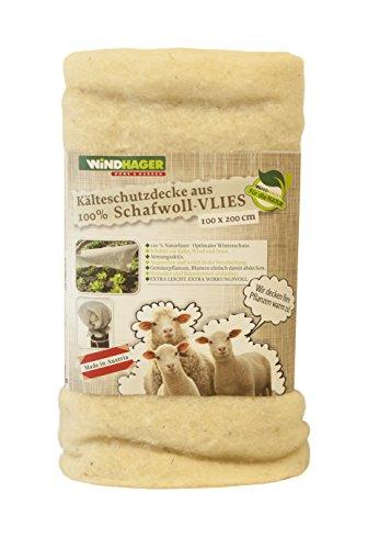 Windhager Couverture d'ouatine en laine de mouton 2 x 1 m Blanc