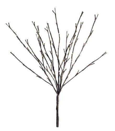 Floral Lichter erleuchtet Weide Zweig mit 60Leuchtmittel, 50,8cm (Floral Zweig)