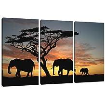 Cuadros en Lienzo 160 x 90 cm Nr. 1066 África enmarcado y listo para colgar, calidad de la marca Visario