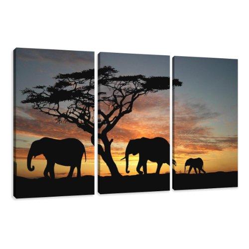 Visario Leinwandbilder 1066 Bild auf Leinwand Afrika, 160 x 90 cm, 3 Teile