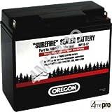 Gel Accu Batterie 12V 18 Ah für Alko Castel Garden Honda Viking Sabo Solo